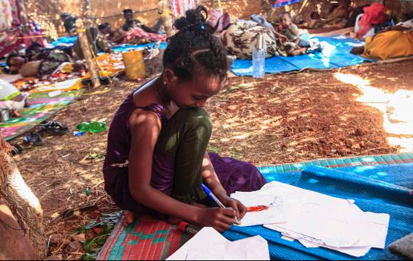 Etiopia: ultimatum del governo ai ribelli,